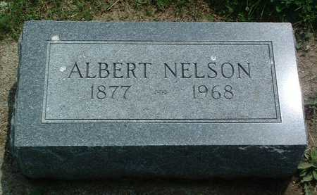 NELSON, ALBERT - Mills County, Iowa | ALBERT NELSON