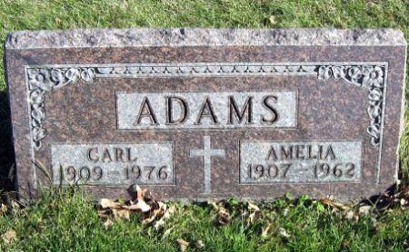 ADAMS, CARL - Mitchell County, Iowa | CARL ADAMS