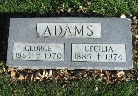 ADAMS, GEORGE - Mitchell County, Iowa   GEORGE ADAMS