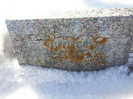 BECHTEL, GEORGE J. - Mitchell County, Iowa   GEORGE J. BECHTEL