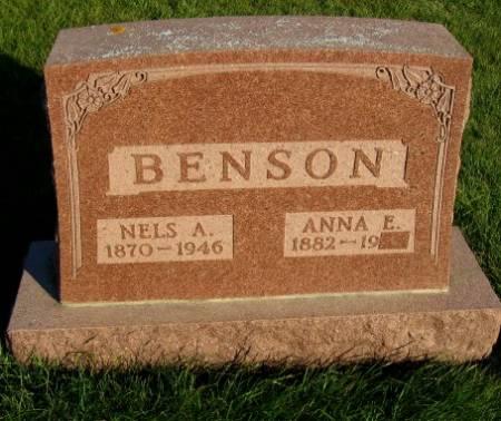 BENSON, NELS A. - Mitchell County, Iowa | NELS A. BENSON