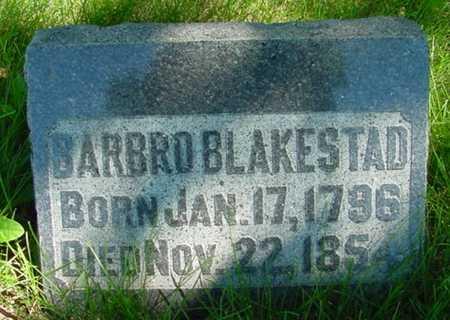 BLAKESTAD, BARBRO - Mitchell County, Iowa | BARBRO BLAKESTAD