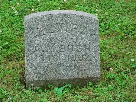 HICKS BUSH, ELVIRA - Mitchell County, Iowa | ELVIRA HICKS BUSH