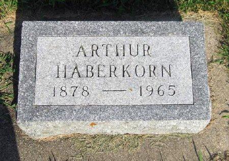 HABERKORN, ARTHUR - Mitchell County, Iowa | ARTHUR HABERKORN