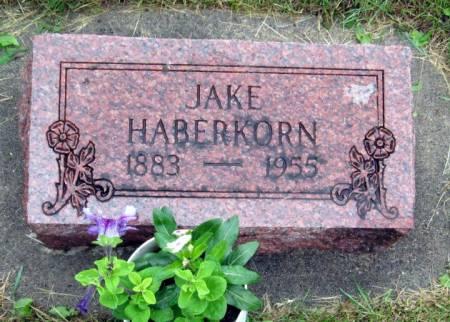 HABERKORN, JAKE - Mitchell County, Iowa   JAKE HABERKORN