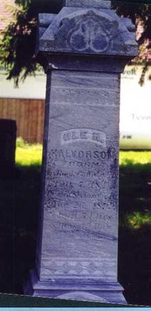HALVORSON, OLE H. - Mitchell County, Iowa | OLE H. HALVORSON