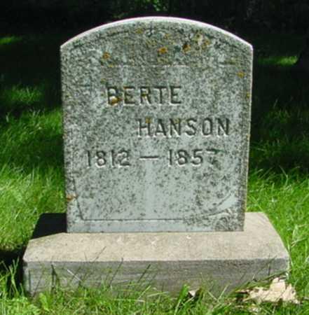 HANSON, BERTE - Mitchell County, Iowa | BERTE HANSON