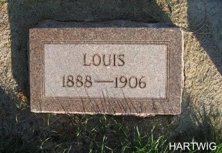 HARTWIG, LOUIS - Mitchell County, Iowa | LOUIS HARTWIG