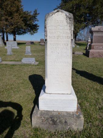 HARTWIG, WILHELMINE - Mitchell County, Iowa | WILHELMINE HARTWIG