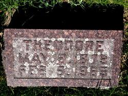 HELLER, THEODORE F. - Mitchell County, Iowa   THEODORE F. HELLER