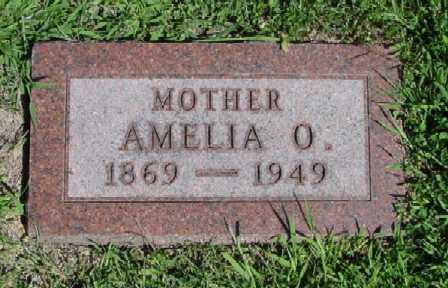 JOHNSON KITTLESON, AMELIA O. - Mitchell County, Iowa | AMELIA O. JOHNSON KITTLESON