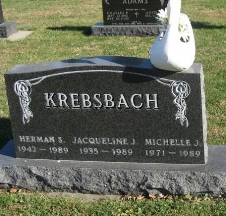 KREBSBACH, MICHELLE J. - Mitchell County, Iowa | MICHELLE J. KREBSBACH