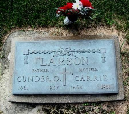 LARSON, GUNDER O. - Mitchell County, Iowa | GUNDER O. LARSON