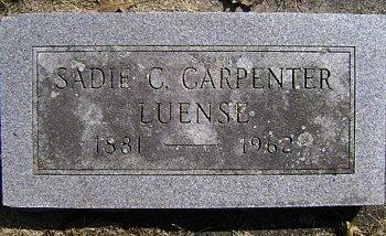 LUENSE, SADIE C. - Mitchell County, Iowa | SADIE C. LUENSE