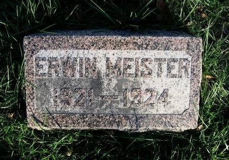 MEISTER, ERWIN - Mitchell County, Iowa | ERWIN MEISTER