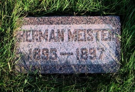 MEISTER, HERMAN (1) - Mitchell County, Iowa | HERMAN (1) MEISTER