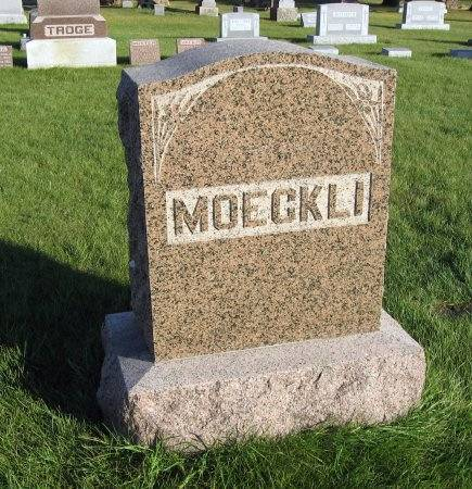 MOECKLI, GEORGE (FAMILYSTONE) - Mitchell County, Iowa | GEORGE (FAMILYSTONE) MOECKLI