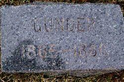 NESSE, GUNDER - Mitchell County, Iowa | GUNDER NESSE