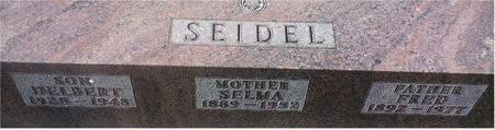 SEIDEL, DELBERT (WHOLE STONE) - Mitchell County, Iowa   DELBERT (WHOLE STONE) SEIDEL