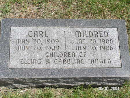 TANGEN, MILDRED - Mitchell County, Iowa | MILDRED TANGEN