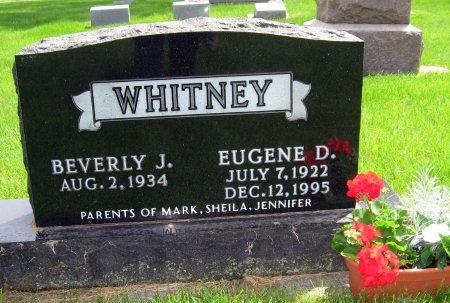 WHITNEY, EUGENE D. - Mitchell County, Iowa | EUGENE D. WHITNEY