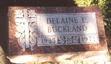 BUCKLAND, DELAINE L. - Monona County, Iowa | DELAINE L. BUCKLAND