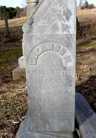 HERRINGTON, ELEANOR M. - Monona County, Iowa | ELEANOR M. HERRINGTON