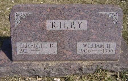 RILEY, ELIZABETH D - Monona County, Iowa | ELIZABETH D RILEY
