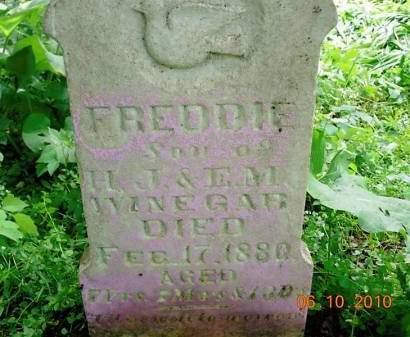 WINEGAR, FREDDIE - Monona County, Iowa | FREDDIE WINEGAR