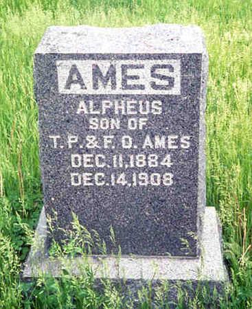 AMES, ALPHEUS FRANKLIN - Monroe County, Iowa | ALPHEUS FRANKLIN AMES