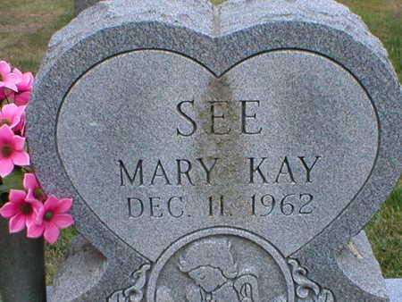 SEE, MARY - Monroe County, Iowa   MARY SEE