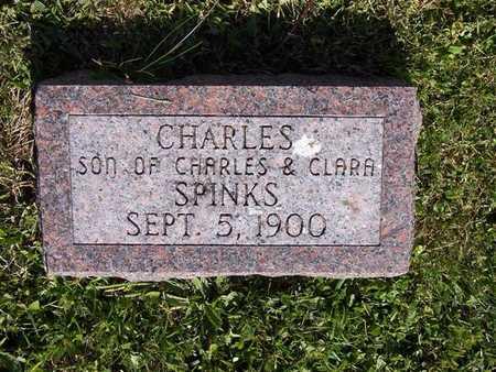 SPINKS, CHARLES - Monroe County, Iowa | CHARLES SPINKS
