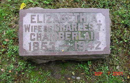 BURNSIDE CHAMBERLAIN, ELIZABETH - Muscatine County, Iowa | ELIZABETH BURNSIDE CHAMBERLAIN