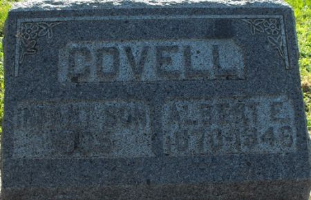 COVELL, INFANT SON - Muscatine County, Iowa | INFANT SON COVELL