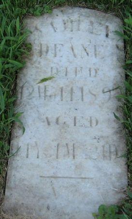 DEANE, SAMUEL - Muscatine County, Iowa | SAMUEL DEANE
