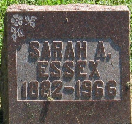 ESSEX, SARAH A. - Muscatine County, Iowa   SARAH A. ESSEX