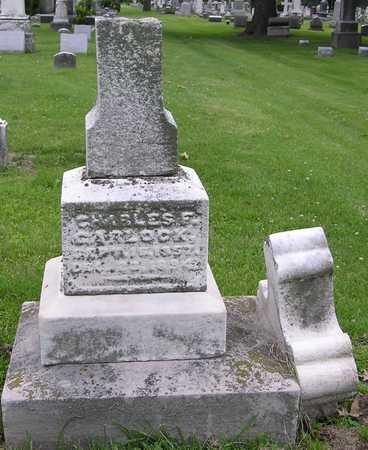 GARLOCK, CHARLES F - Muscatine County, Iowa   CHARLES F GARLOCK