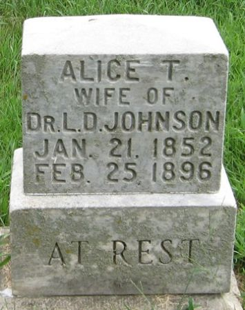 JOHNSON, ALICE T. - Muscatine County, Iowa   ALICE T. JOHNSON