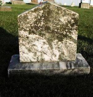 MILLER, JOSIAH - Muscatine County, Iowa   JOSIAH MILLER