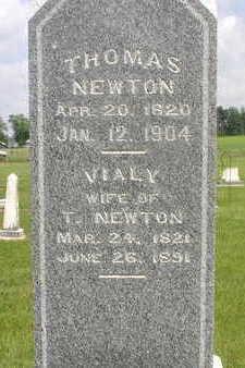 NEWTON, VIALY (VIOLA) - Muscatine County, Iowa | VIALY (VIOLA) NEWTON