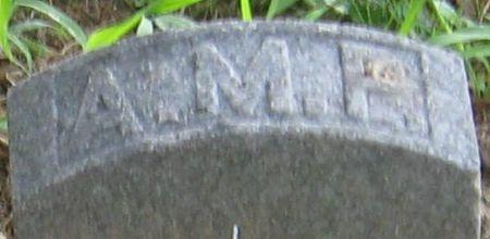 PINKHAM, A. M. - Muscatine County, Iowa | A. M. PINKHAM
