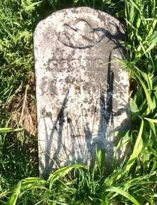 ROUSCH, GEORGE - Muscatine County, Iowa | GEORGE ROUSCH