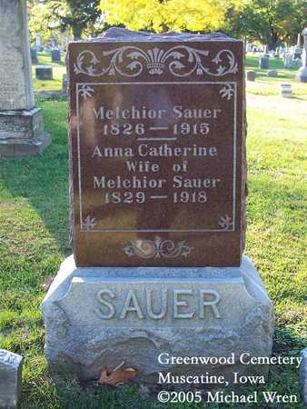 DAMM SAUER, ANNA CATHERINE - Muscatine County, Iowa | ANNA CATHERINE DAMM SAUER
