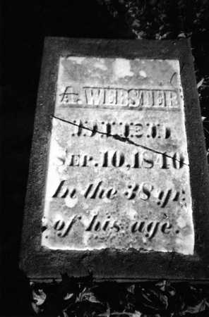 WEBSTER, A. - Muscatine County, Iowa | A. WEBSTER
