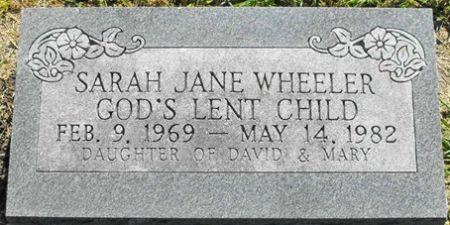 WHEELER, SARAH JANE - Muscatine County, Iowa   SARAH JANE WHEELER