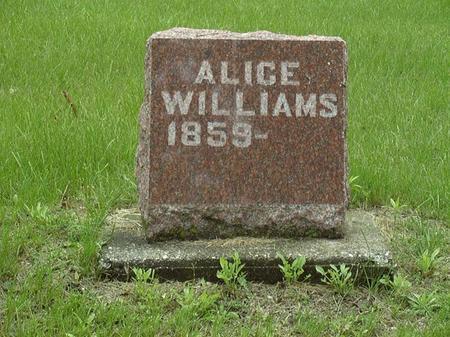 HENDERSON WILLIAMS, ALICE - Muscatine County, Iowa | ALICE HENDERSON WILLIAMS