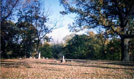 WRIGHT, MARY E. - Muscatine County, Iowa | MARY E. WRIGHT