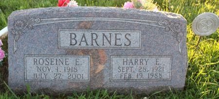EBERLY BARNES, ROSEINE ELLA - Page County, Iowa | ROSEINE ELLA EBERLY BARNES