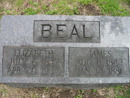 BEAL, SARAH ELIZABETH - Page County, Iowa | SARAH ELIZABETH BEAL