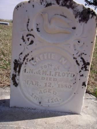 FLOYD, LAFFIE N. - Page County, Iowa | LAFFIE N. FLOYD